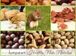 healthy nuts small