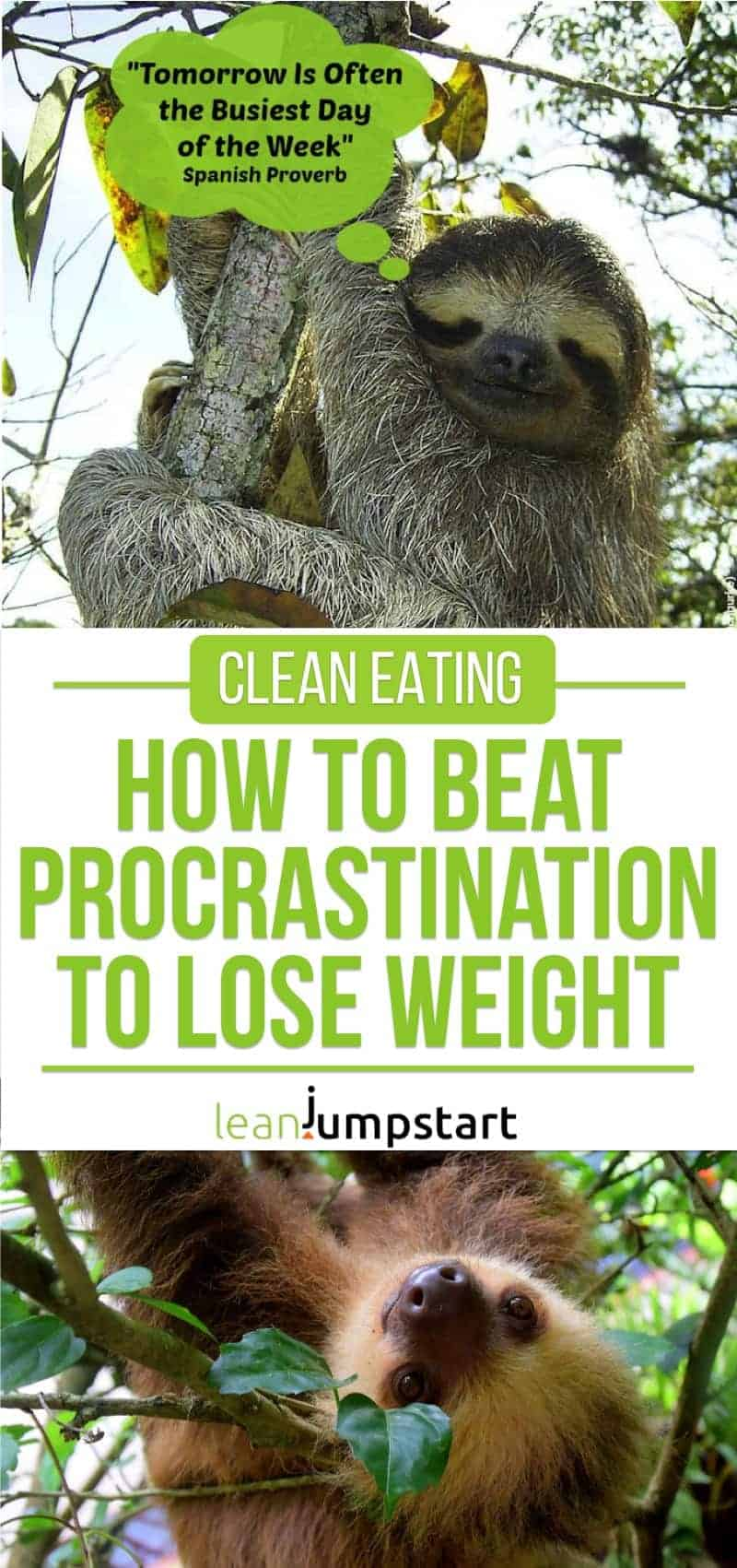 clean eating: how to beat procrastination to lose weight