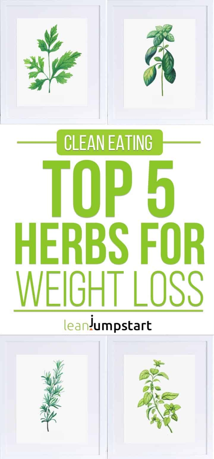 herbs for weightloss: Top 5 herbs you can grow indoors