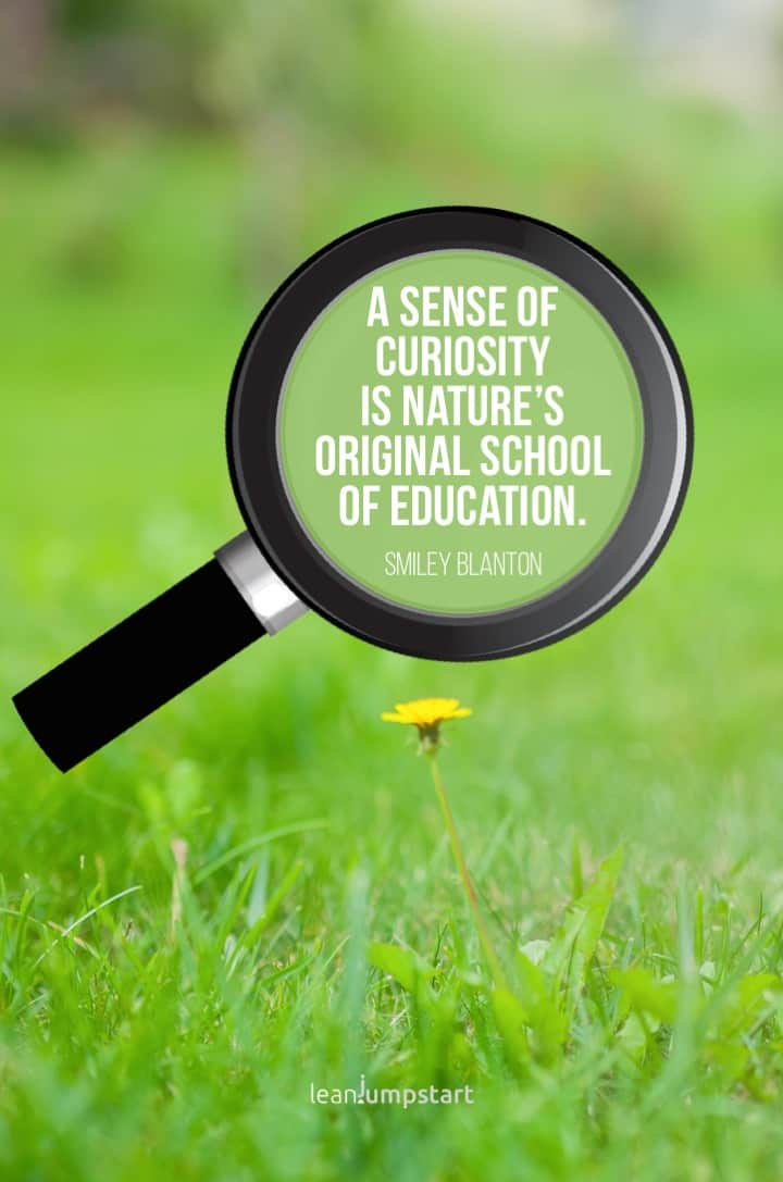 learn from curiosity quote