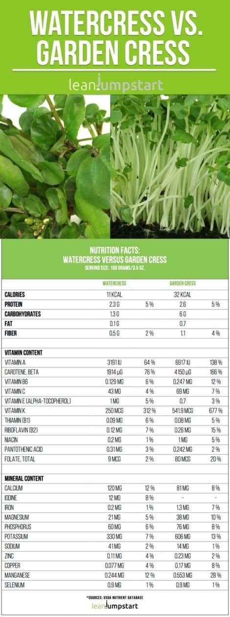 Watercress nutrition facts and health benefits, cress uses + recipe tips