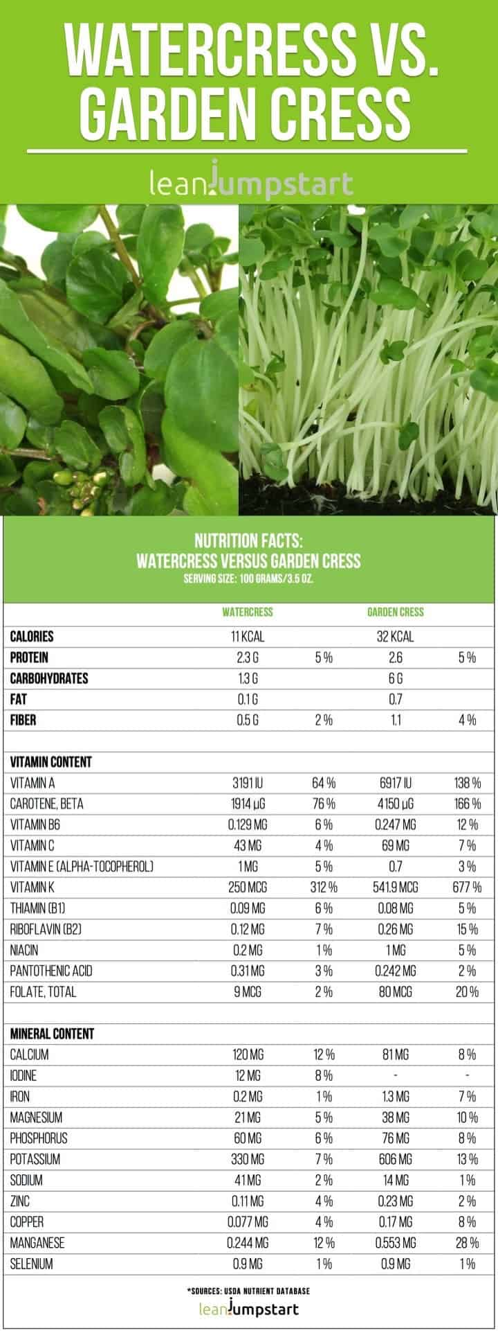 watercress vs garden cress