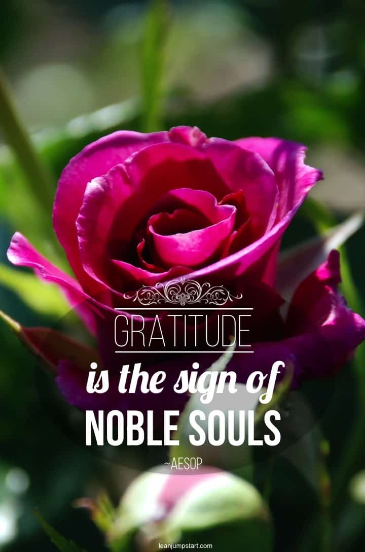 gratitude and soul quote