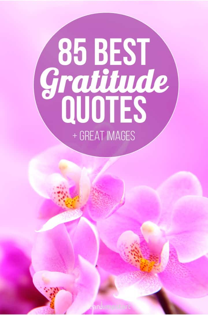 best gratitude quotes and thankful sayings images